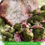 Creamy Ranch Pork Chops Recipe